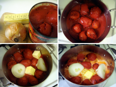 tomatobutteronionsauce