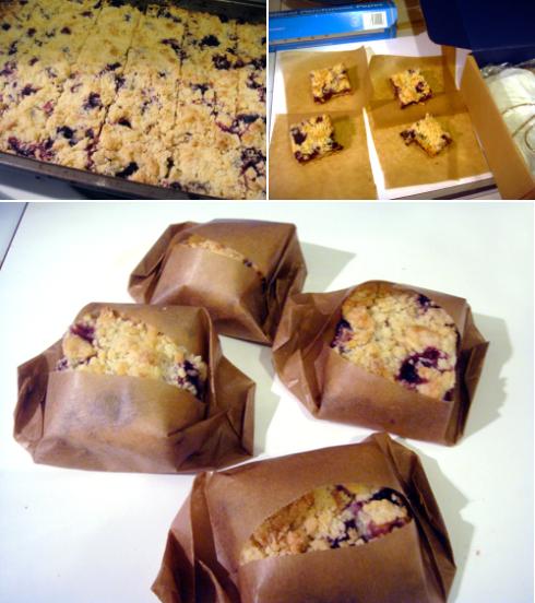 package-blueberrybars