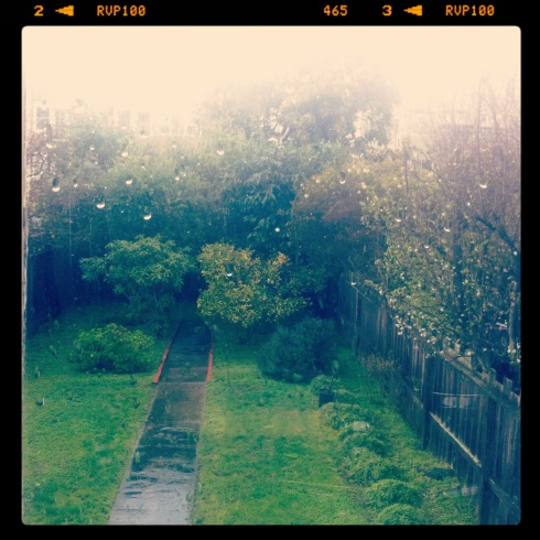 Rain out my window