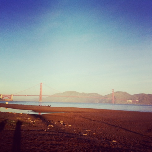 View on reg morning walk