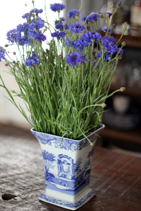Blue Cornflowers and Blue Vase